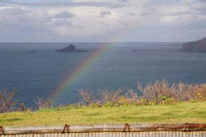 雨上がりに虹